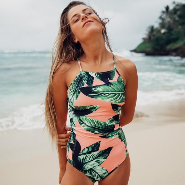 albion palms